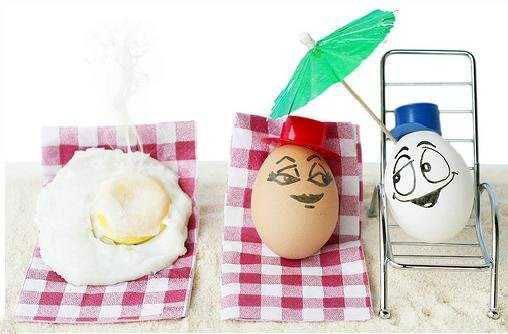 4483818_funny_eggs_13 (508x334, 34Kb)