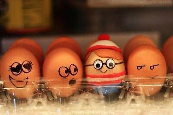 4483818_funny_eggs_4 (604x404, 31Kb)