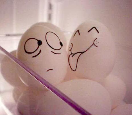 4483818_funny_eggs_15 (464x404, 22Kb)