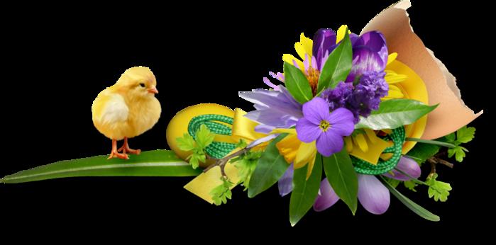 Пасхи! Букет весенних цветов. Линия-разделитель./3241858_125461287_103800037_large_47 (699x346, 225Kb)