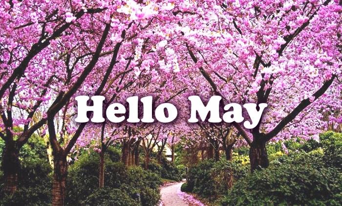 may_011 (700x422, 511Kb)