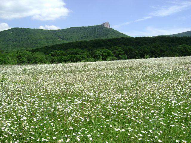 Гора Кок-Таш (640x480, 373Kb)