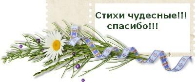5570014__1_ (400x169, 22Kb)