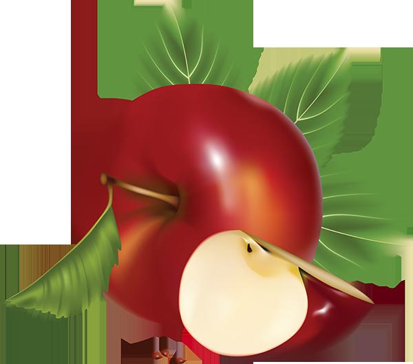apple_png41wuri8 (600x530, 200Kb)
