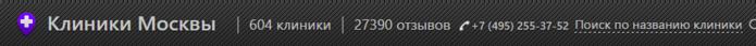 Screenshot (8) (700x43, 31Kb)