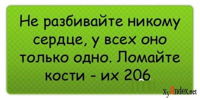 1329659053_anekdot-0032 (700x350, 194Kb)