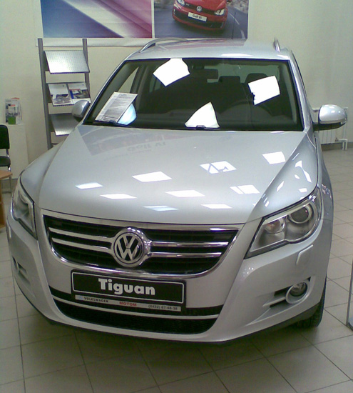 my-tiguan-salon (495x550, 102Kb)