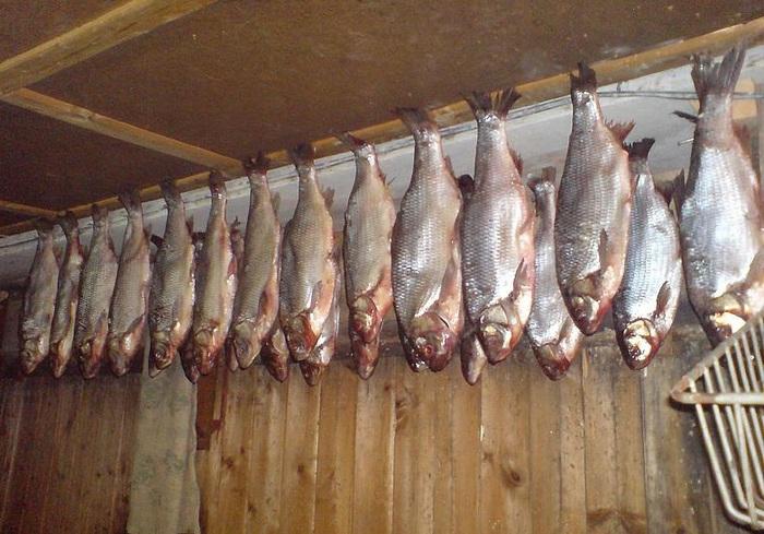 Как вялить рыбу в домашних условиях рецепты