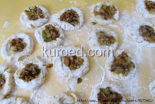 Картофляники с зеленым луком, пошаговое приготовление - выложить  начинку/5177462_kartoflianiki_s_zelenim_lukom_005 (500x335, 101Kb)