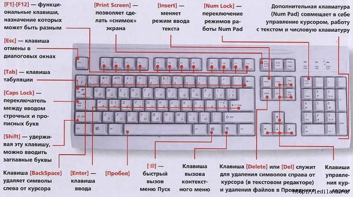 6009459_128350015_3925311_shpargalka_klaviatyri (700x390, 209Kb)