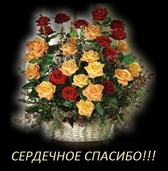 image (573x582, 525Kb)
