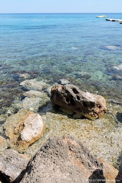 Кипр, май 2016 (2) (466x700, 374Kb)