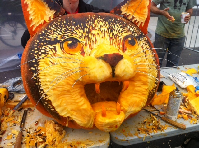 carved-pumpkin-cat (640x478, 156Kb)