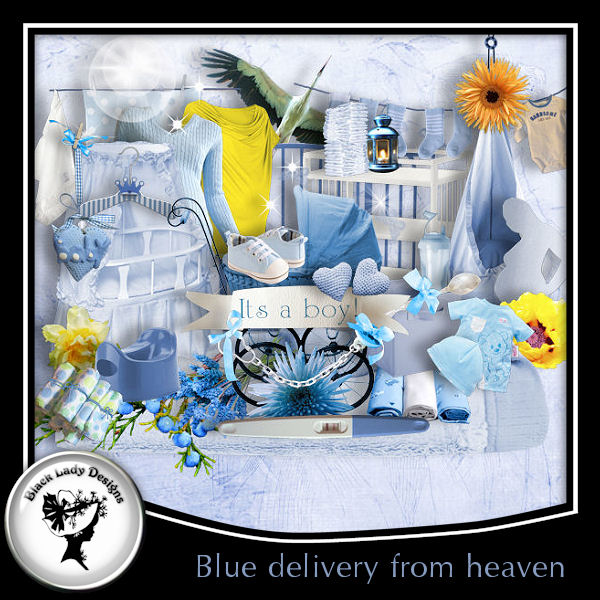 bld_BlueDelivery_pv (600x600, 109Kb)