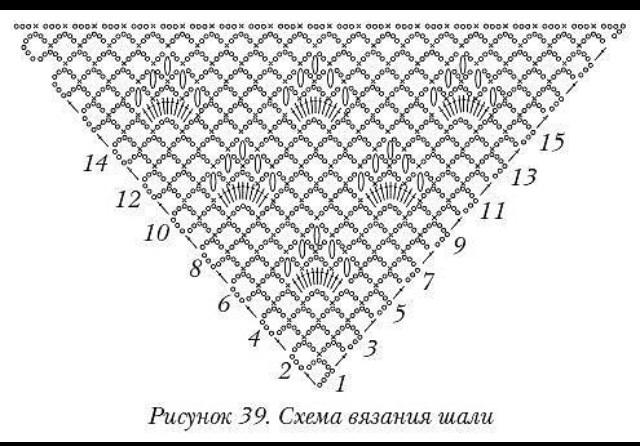image (640x446, 108Kb)