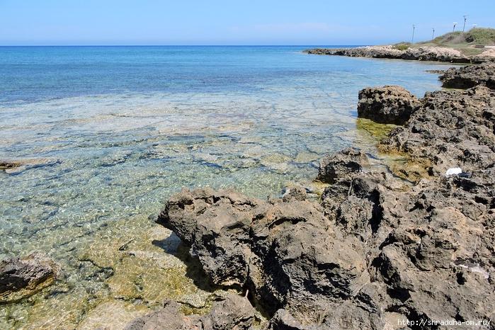Кипр, май 2016 (15) (700x466, 387Kb)