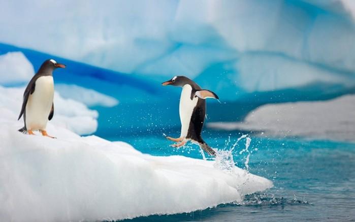 Антарктика тает намного быстрее