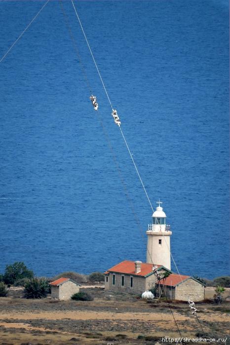 Кипр, май 2016 (19) (466x700, 272Kb)