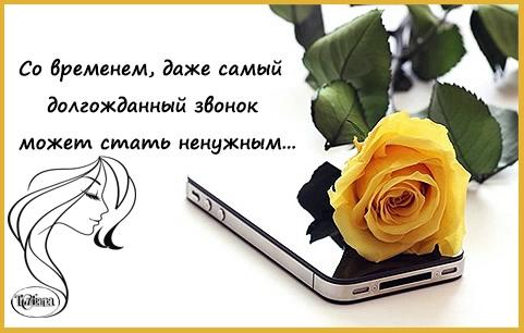 звонок (481x306, 108Kb)