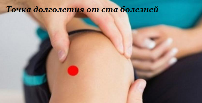 2749438_Tochka_dolgoletiya_ot_sta_boleznei (700x358, 213Kb)