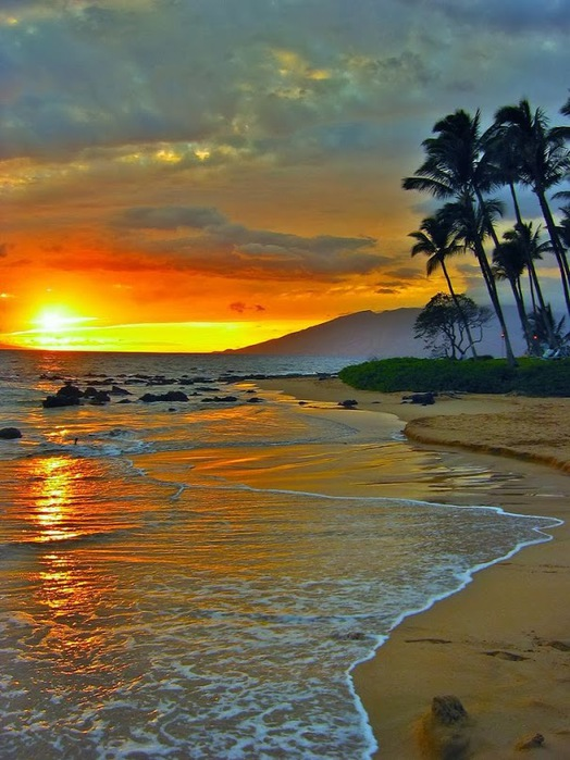 3421230_Sunset_at_Island_of_Maui_Hawaii_____ (524x700, 120Kb)