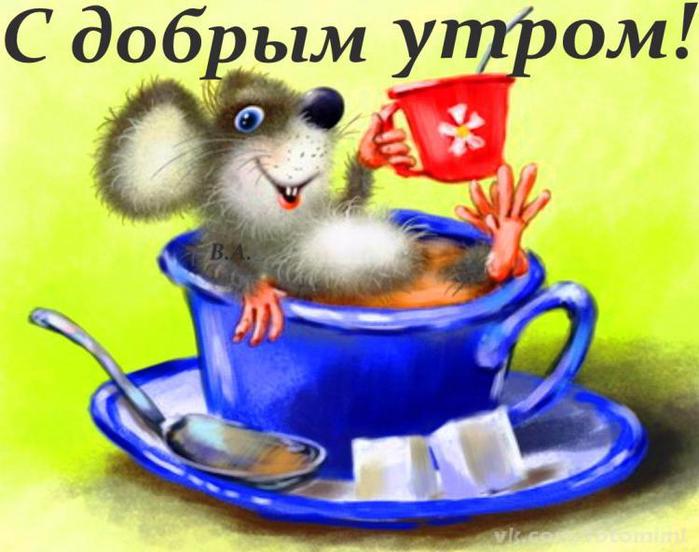 Утренняя веселая открытка 67