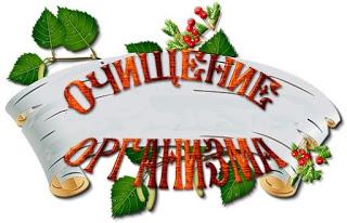 3806798_1440453221_toksiny81 (320x206, 28Kb)