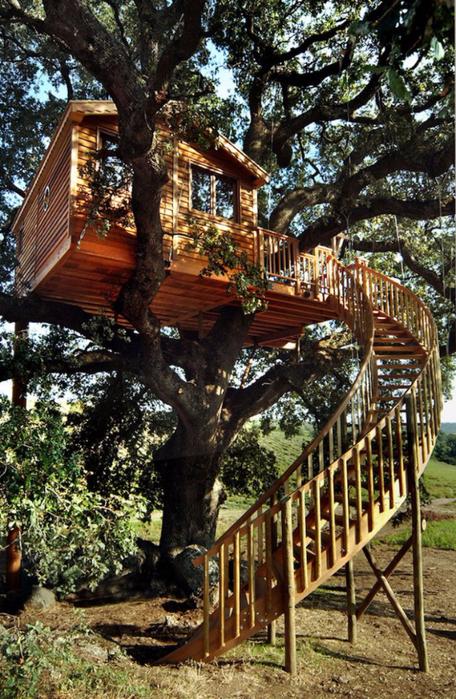 домик на дереве 2 (456x700, 501Kb)