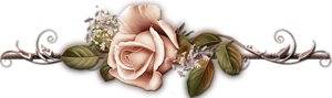 разделитель розочкарозово-коричн (300x89, 42Kb)