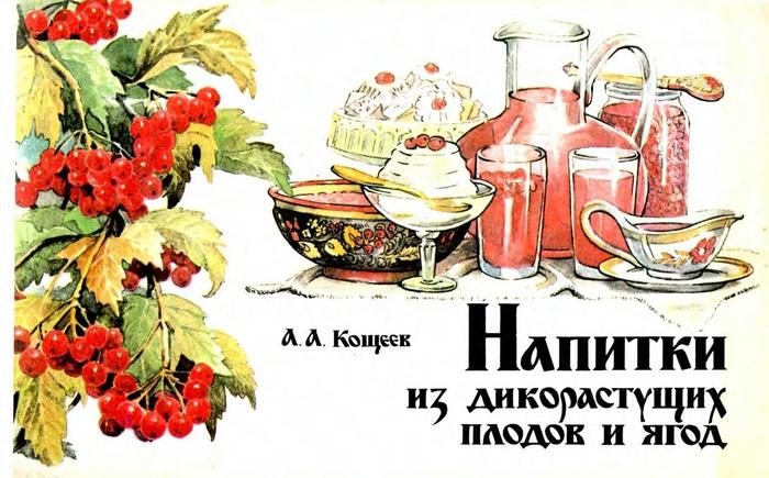Кощеев А.А. - Напитки из дикорастущих плодов и ягод - 1991_1 (700x435, 242Kb)