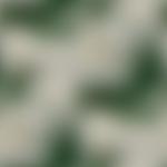 Превью 11891065_724006897705833_3134718206954859244_n1-624x624-3 (600x600, 72Kb)