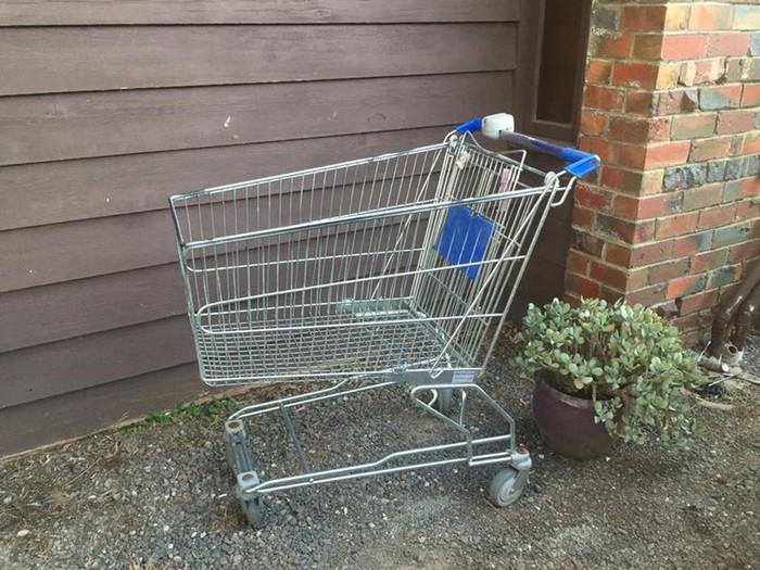 Австралиец превратил тележку из супермаркета в домашнего питомца