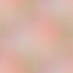 Превью 03-12 (450x450, 32Kb)