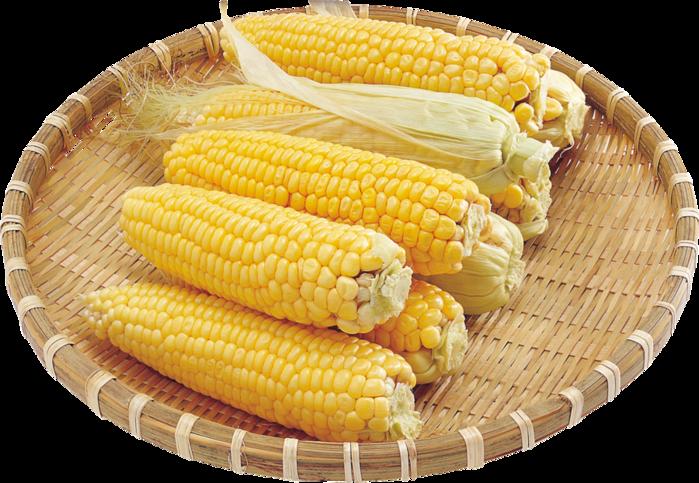 4709286_123072772_corn_PNG5280 (699x483, 608Kb)