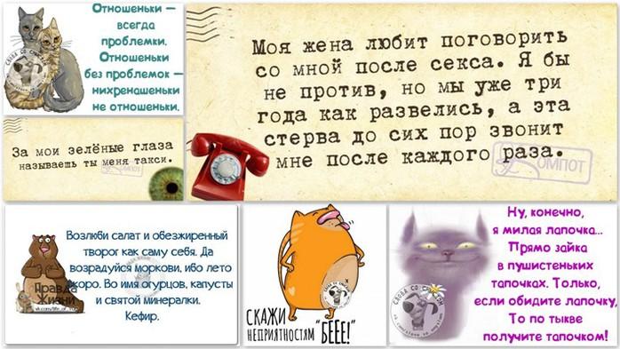 5672049_1398712547_frazochki (700x393, 96Kb)