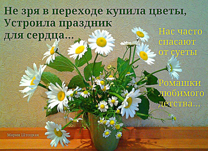 image РОМАШ (700x507, 618Kb)