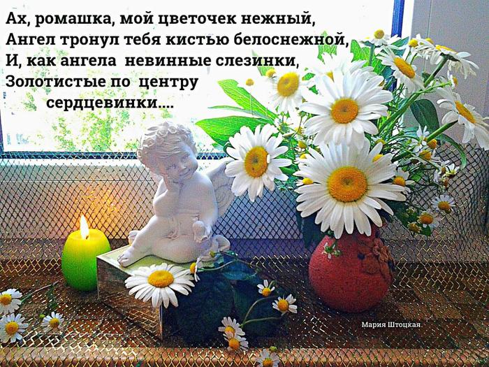 image (1) РОМАШК�