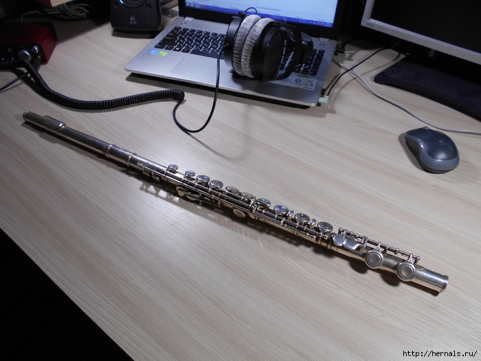 оркестровая флейта/4555640_DSCN0007_2_1_ (700x525, 268Kb)