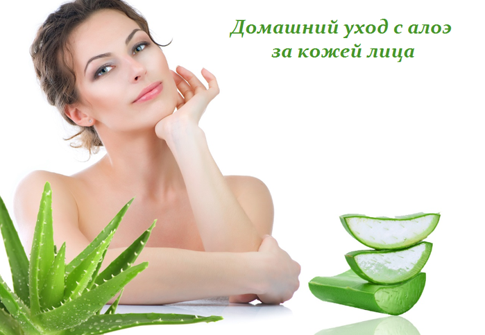 2749438_Domashnii_yhod_s_aloe_za_kojei_lica (700x483, 277Kb)