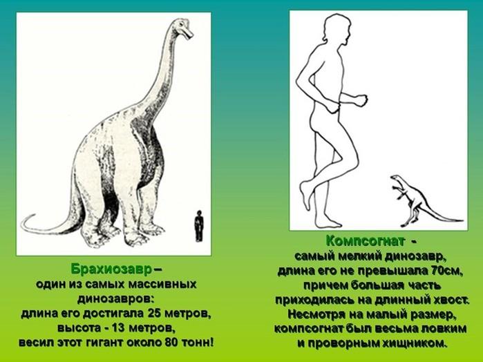 Микромонстры. Динозавры малютки