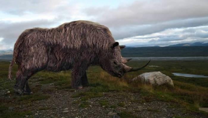 Как ученые пытаются «воскресить» вымерших животных