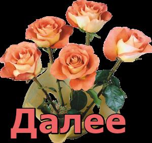4809770_YaRoziD_R_ (300x283, 110Kb)