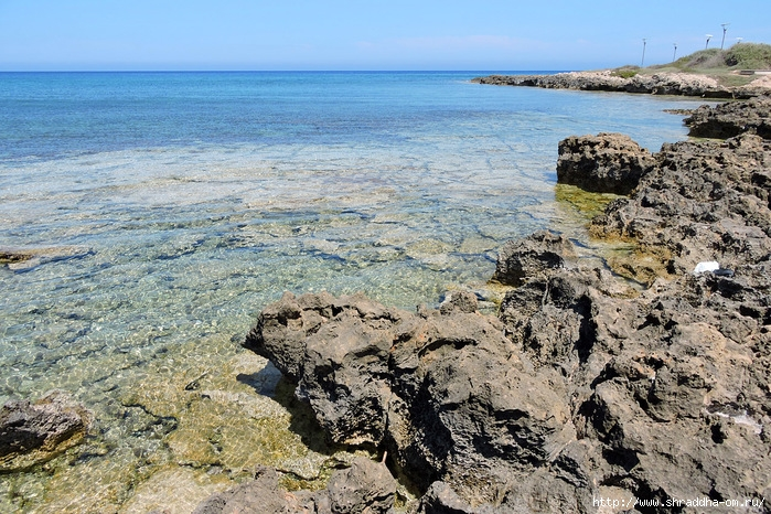 Кипр, май 2016 (15) (700x466, 378Kb)