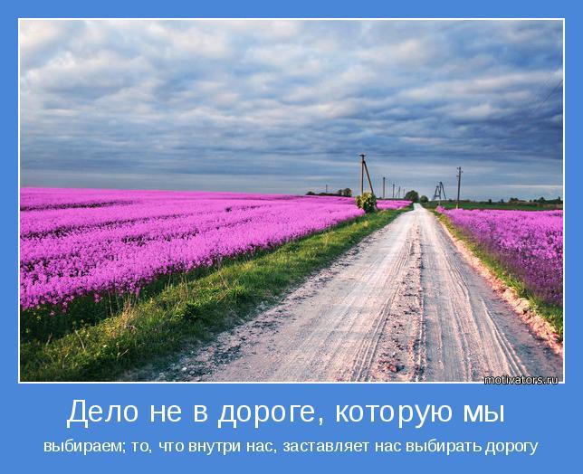 Рисунок дорога которую я выбираю
