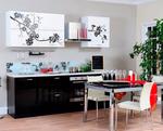 Превью кухни в японском стиле5 (495x400, 158Kb)