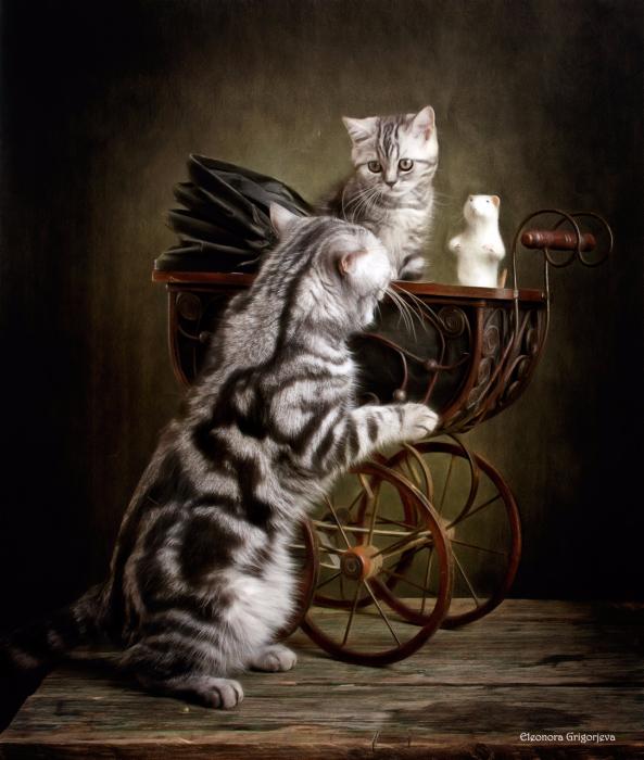 Котики Элеоноры Григорьевой1 (593x700, 481Kb)