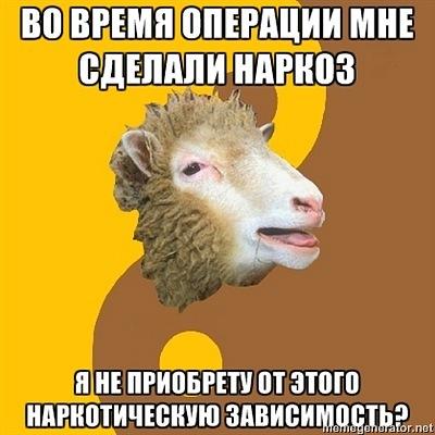 Овца мракобес расскажет всё о современной науке