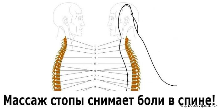 """alt=""""Массаж стопы снимает боли в спине""""/2835299_Massaj_stopi_snimaet_boli_v_spine (700x350, 86Kb)"""