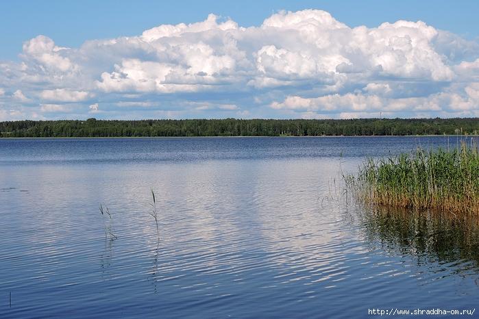 июль, Ленинградская область (9) (700x466, 289Kb)