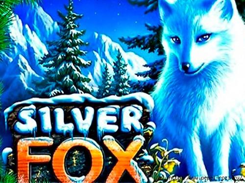 игровой слот Silver Fox («Серебряный лис») от клуба Вулкан/4403711_SilverFox (500x375, 196Kb)